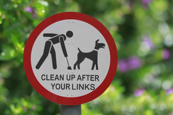 Clean Up After your Links