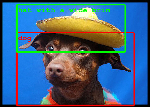 Google Image Recognition Dog With Hat