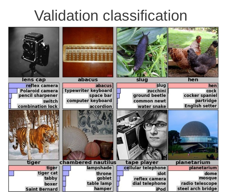 Google Validation Image Detection