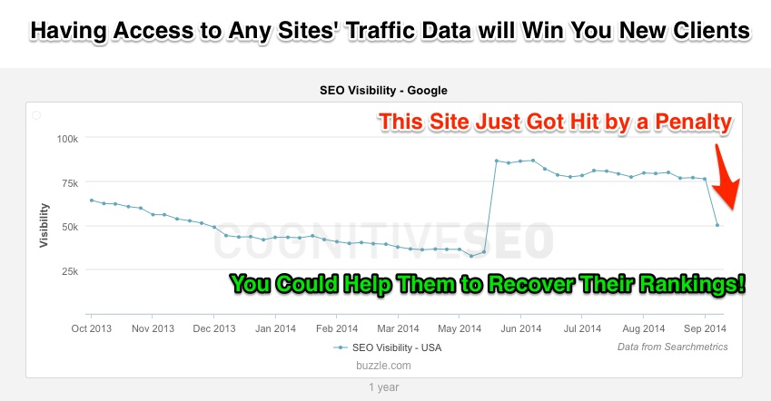 Win New Clients by Spotting Search Engine Penalties