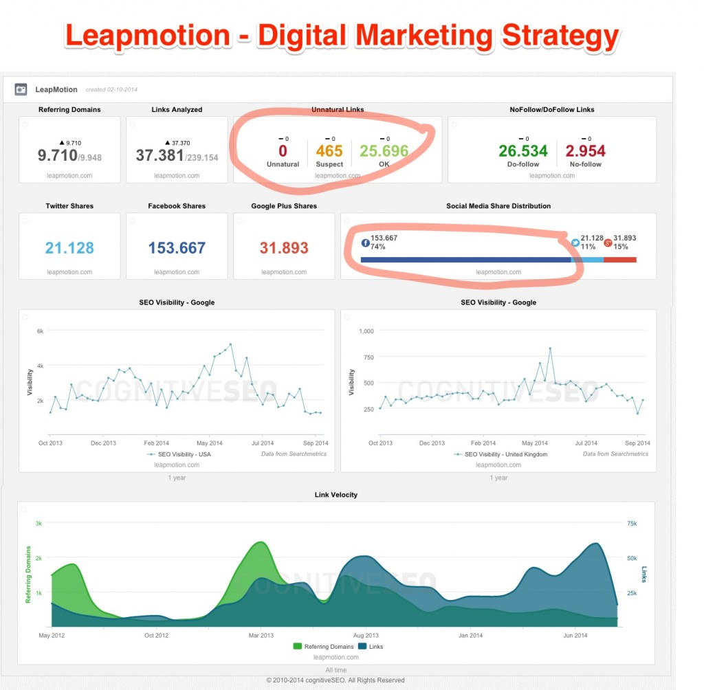 Leapmotion Digital Marketing Strategy