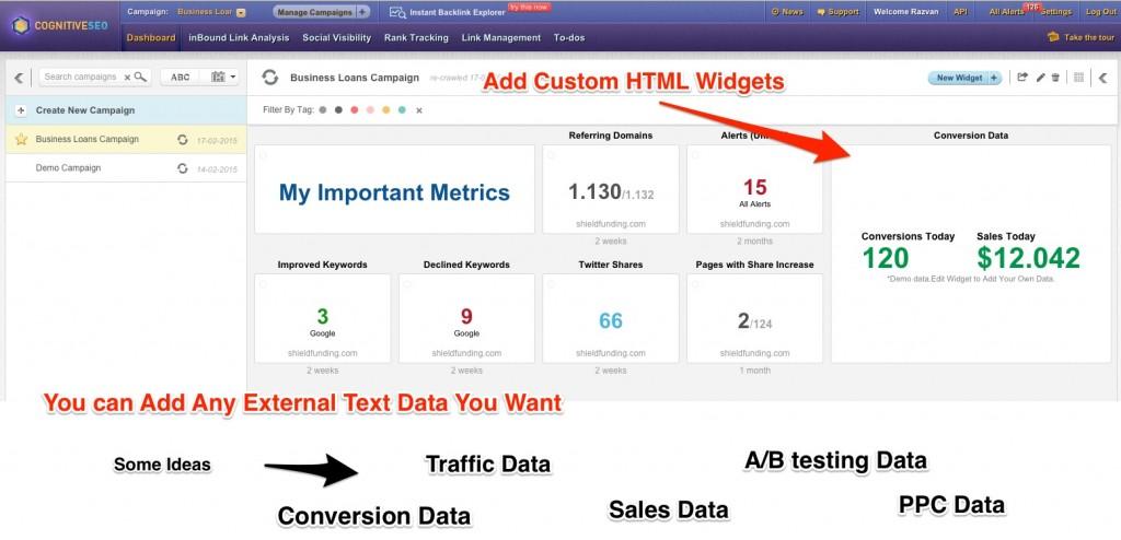 HTML Widgets cognitiveSEO