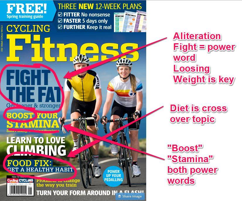 Fitness Niche Headlines