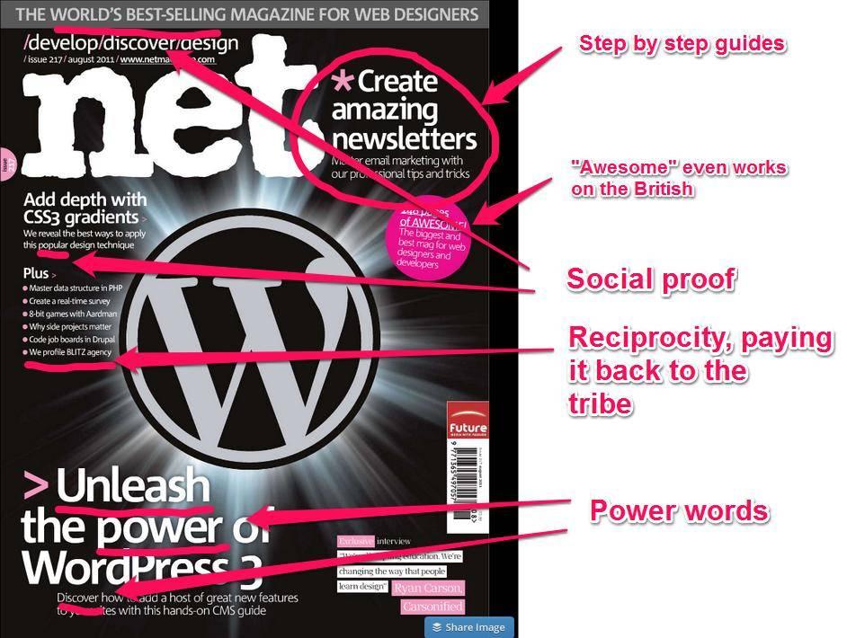 Web Development Niche Headlines