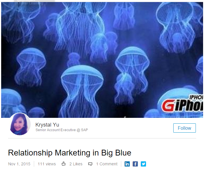 Relationship Marketing in Big Blue