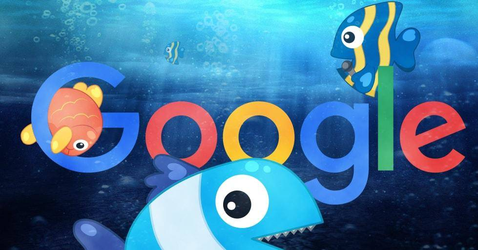 Google Fred Update cognitiveSEO