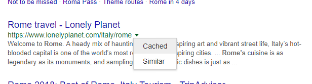Cached website in SERP
