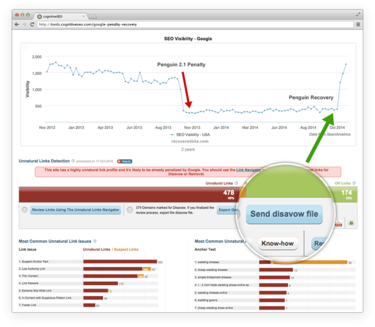 Successful Google Penalty Recoveries and Ranking Improvements