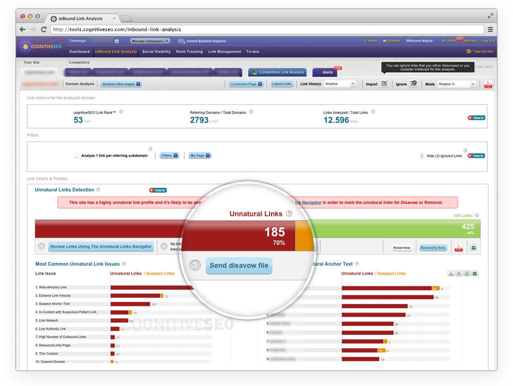 cognitiveSEO inBound Link Analysis